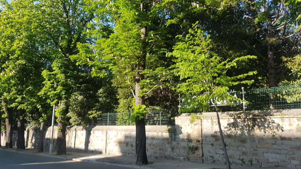 I muretti che si affacciano sulla via Rossetti nascondono alla vista giardini e parchi ricordo di tempi passati