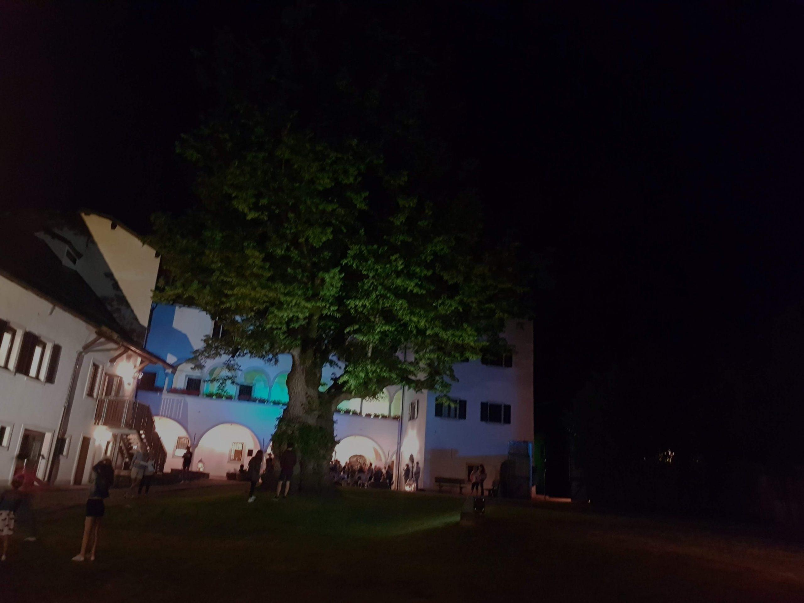 Festival delle Risonaze le serate sotto il tiglio di Palazzo Veneziano a Malborghetto