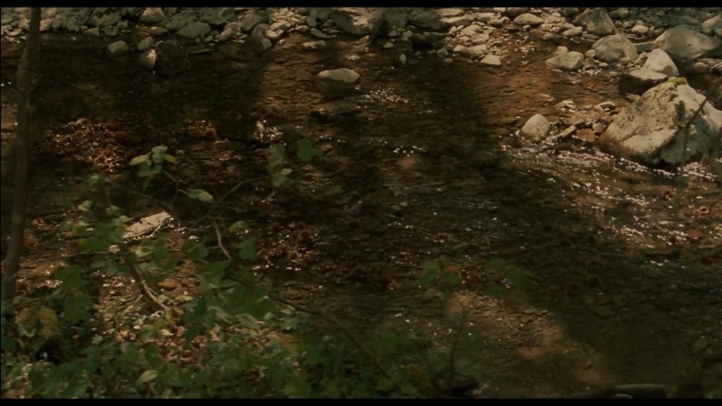 Le acque scorrono lente come la vita, trai boschi e le castagne nelle valli del Natisone