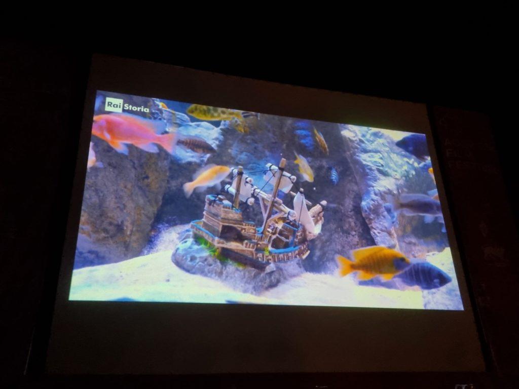 Aquileia film Festival 2021 tesori sottomarini min 1