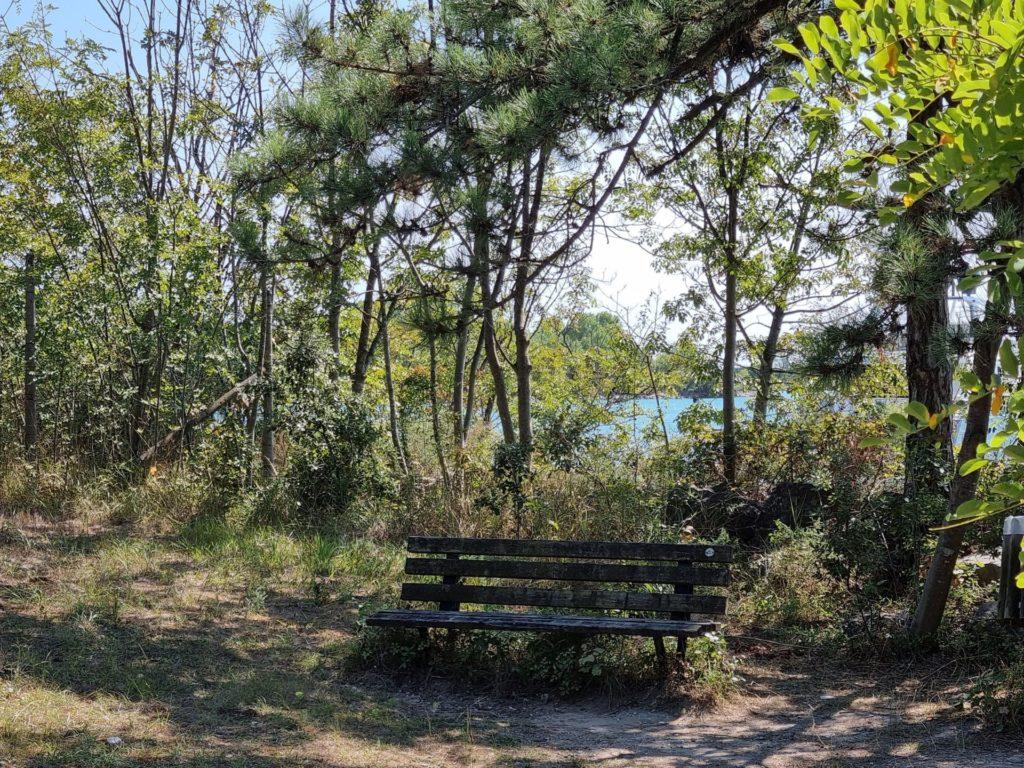piste ciclabili a Lignano