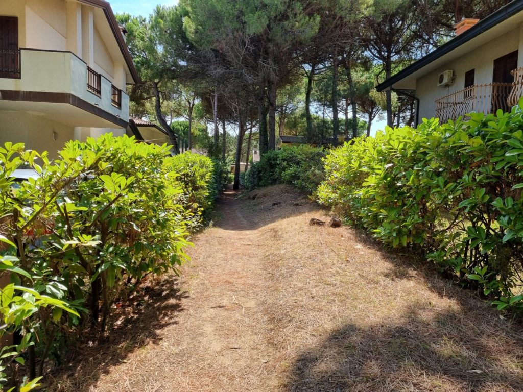 le case di Riviera immerse nella pineta