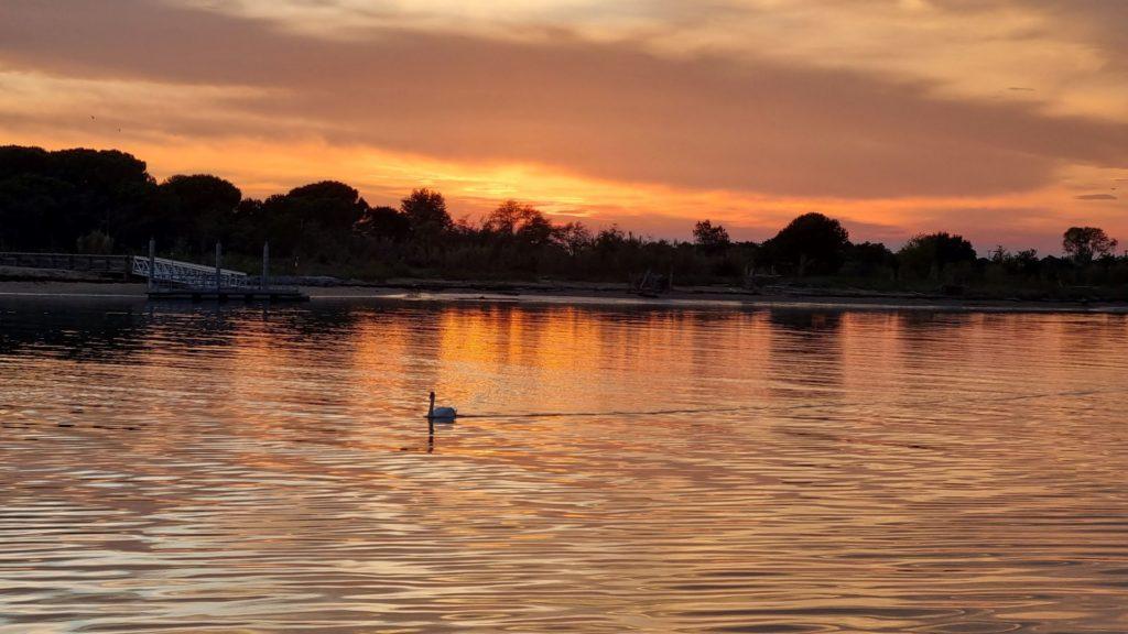 tramonto sul Tagliamento