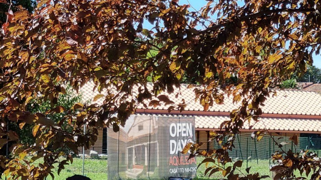 Visitare Aquileia romana - Open Day